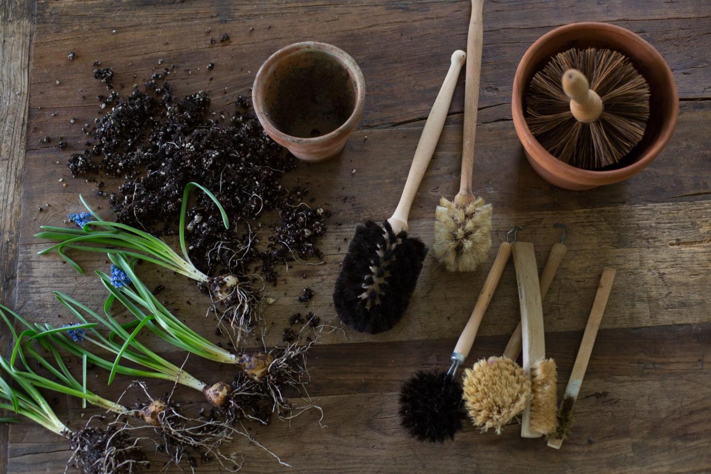 9 stvari koje trebate raditi tokom maja u Vašem vrtu